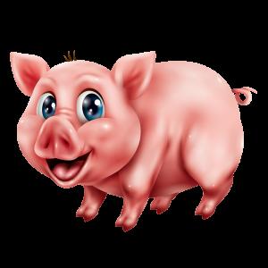 מדבקת קיר חזיר צעיר