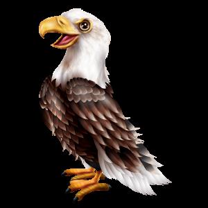 מדבקת קיר ציפורים - נשר מרשים עומד בפרופיל עם פה פתוח