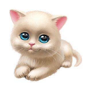 מדבקת קיר חתלתול לבן עם עיניים כחולות.