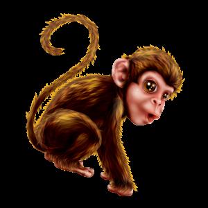 מדבקת קיר בעלי חיים - קוף מצויר.