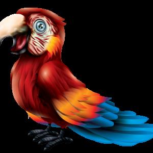מדבקת קיר ציפורים - ציור של תוכי מסוג ארה ארגמנית